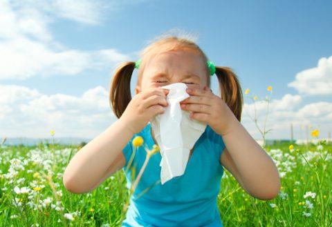 Alergia – Tipos, Síntomas y Recomendaciones.